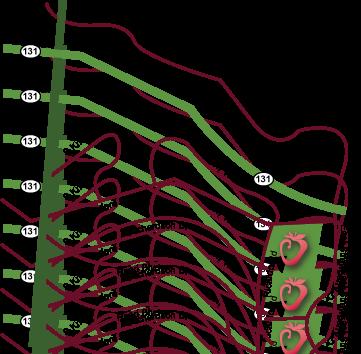 Strawberry rec center map